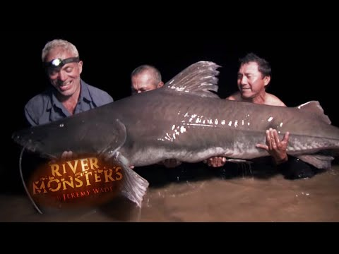 Catching The Lau Lau - River Monsters