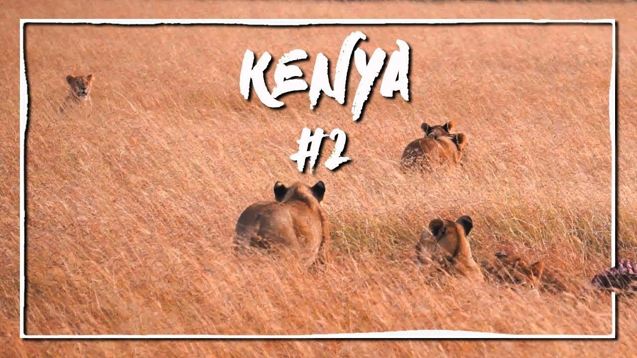 Meraviglia al Masai Mara (Viaggio fai da te in Kenya PT.2/10) ✈ Vlog