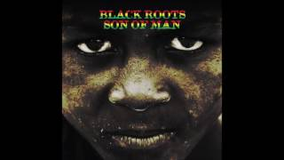 Black Roots - Wake Up