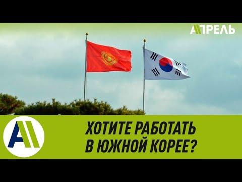 Трудоустройство в Южной Корее: правила и порядки \\ 26.02.2019 \\ Апрель ТВ