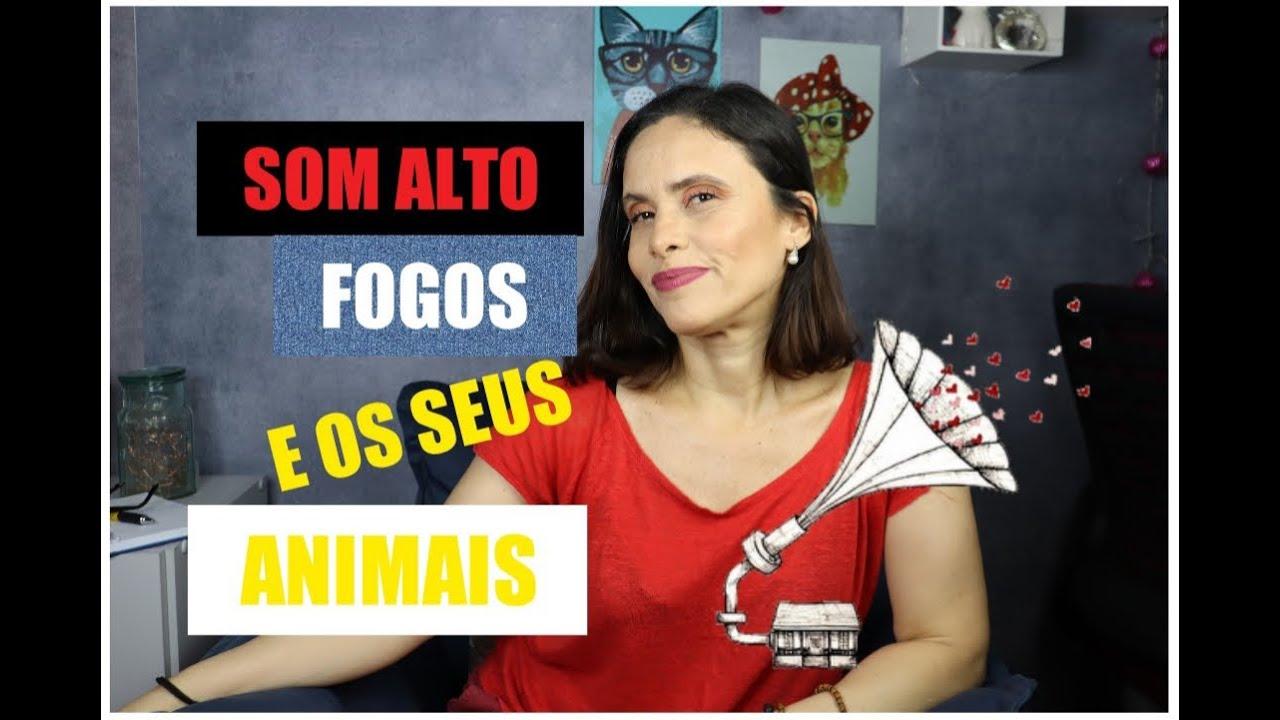 SOM ALTO, FOGOS EM FESTAS DE NATAL E ANIMAIS