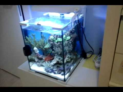 aquarium aquael 30l youtube. Black Bedroom Furniture Sets. Home Design Ideas
