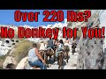 TWB is Live! Over Weight Cruise Passengers Barred From Riding Donkeys In Santorini!