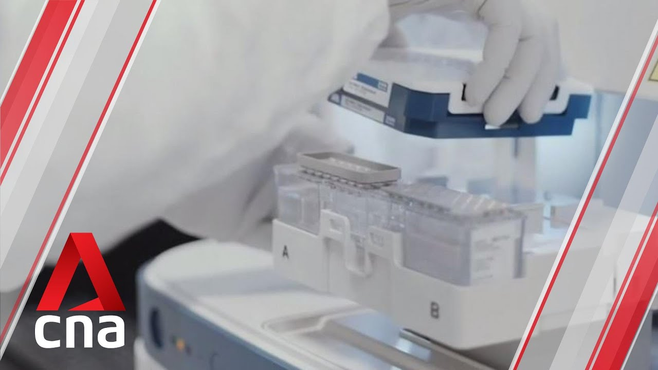 Singapore Approves Pfizer Biontech Covid 19 Vaccine First Shipment Expected By End Dec Youtube