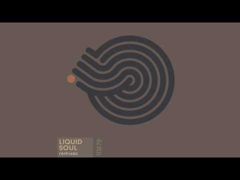 Liquid Soul - Devotion (Suduaya remix)