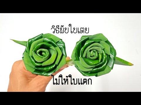 เทคนิคง่ายๆกับวิธีพับดอกกุหลาบใบเตยไม่ให้ใบเเตก #DIY flower from Panda  BY PPP CHANNEL