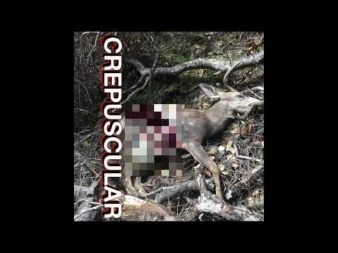 Jason Christopher Watkins - Crepuscular (Full Album 2016)
