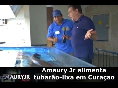 Amaury Jr Alimenta Tubarão-lixa Em Curaçao