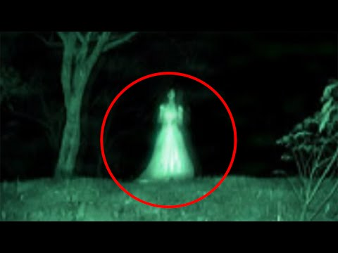 Top 15 Paranormal Creatures and Beasts from YouTube · Duration:  23 minutes 55 seconds