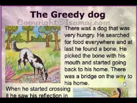 learn English to Hindi translate with very easy way (a greedy dog)