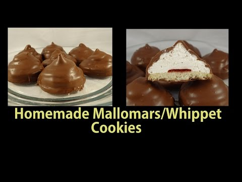 Homemade Mallomars / Whippet Cookies -with yoyomax12