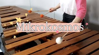 Gambar cover BTS (방탄소년단) -Mikrokosmos (소우주) 마림바 커버 Marimba cover #bts#mikrokosmos#boywithluv#방탄소년단