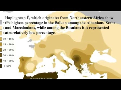 GENETICS OF BOSNIAKS
