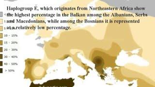 Genetics Of Bosniaks