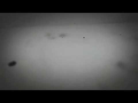 Клип Слезы Асфальта - Берег