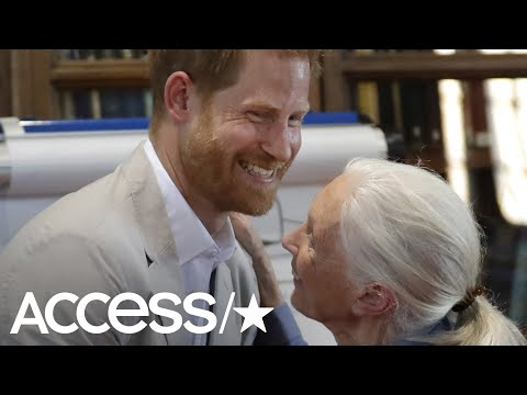 Prince Harry Does Adorable Dance With Dr. Jane Goodall After Cuddling With Baby Archie