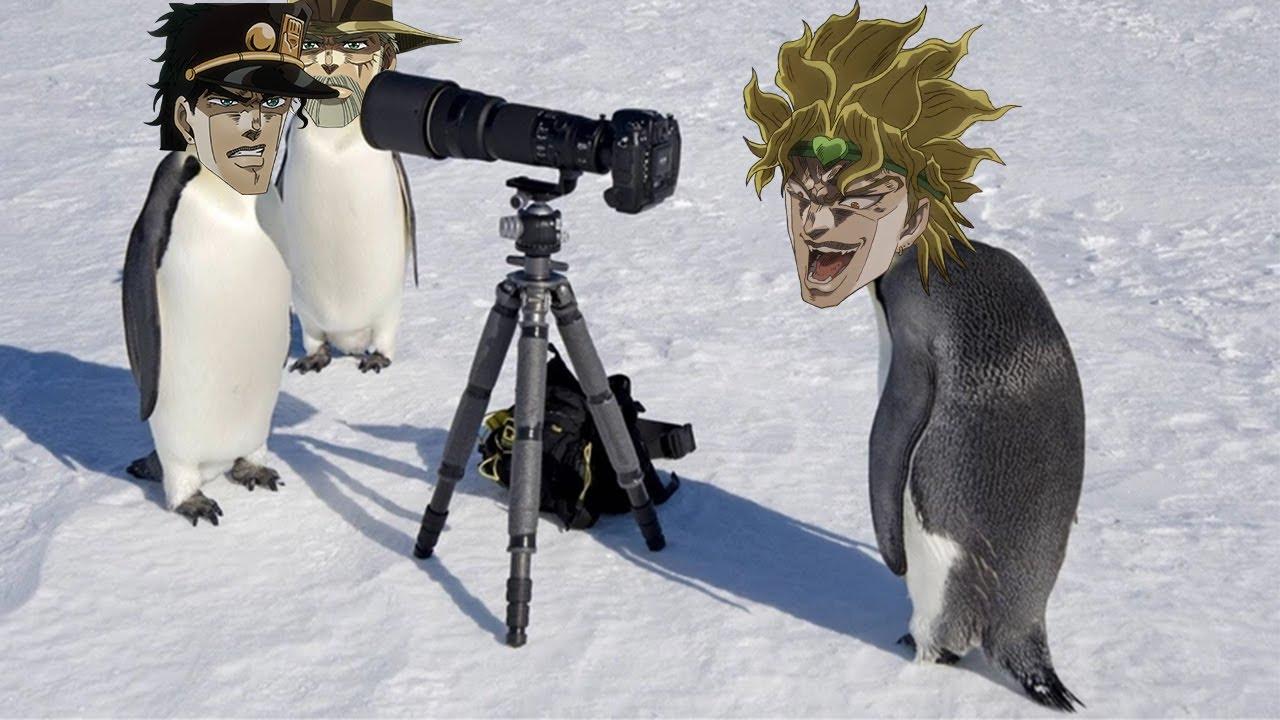 JoJo's Penguin Adventure | Part 7