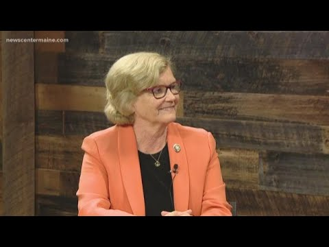 Rep. Chellie Pingree (D) Candidate for Congress