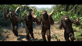 SHOCKING! CHIMPANZEES SINGING & DANCING TO BUHARI (Nigerian Music & Entertainment)