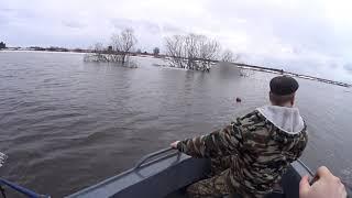 НАКОНЕЦ ТО ВЕСНА Первые дни рыбалки сетями Наконец то ЩУКА попалась