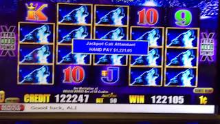 Timper Wolf Deluxe slot machine Jackpot