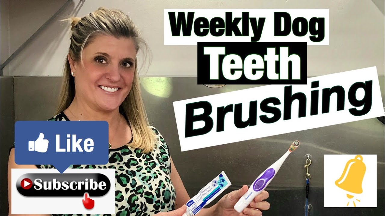 Get Your Tooth Brush to Work!