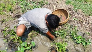 Hand Fish Catching ! Boy catching Giant Catfish by Hand in Mud Water | Deep hole Fishing (Part-5)