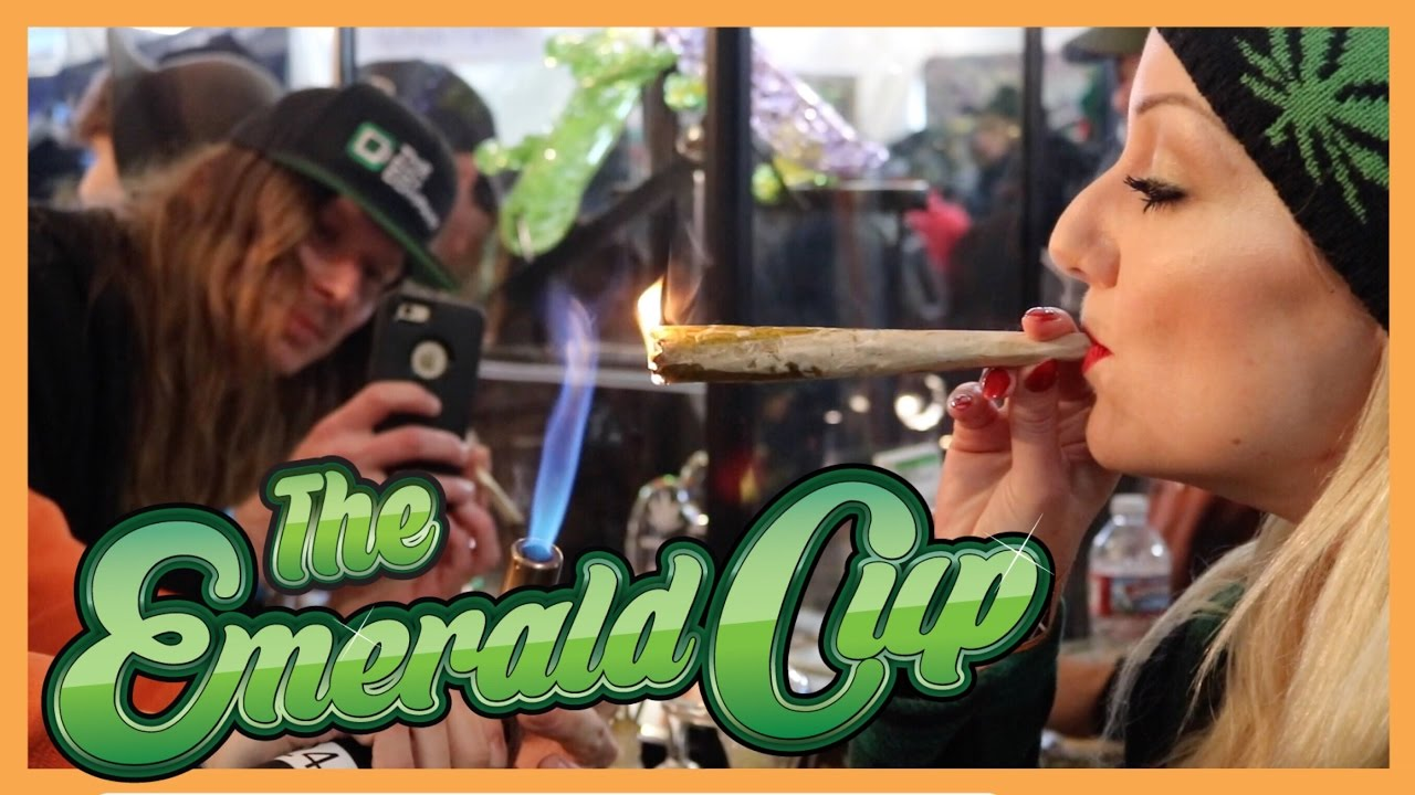 EMERALD CUP 2016 | HIGHlights | CoralReefer in Santa Rosa, California