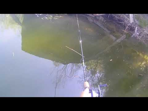Tulloch Lake Day 1 KBF May Month Long