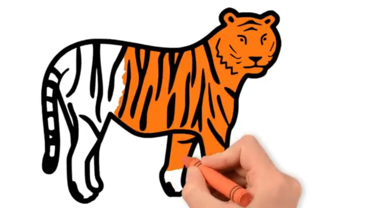 Tiger Drawing and Colouring || Coloring Pages for Kids ...