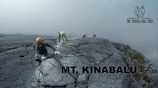 ONE OF THE HARDEST HIKES I'VE DONE! (Mt. Kinabalu via Ferrata, Sabah, Malaysia) - Vlog 19