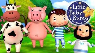 Ringa Ringa Roses | Nursery Rhymes | HD Version from LittleBabyBum
