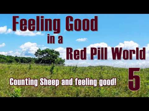 Feeling Good in a Red Pill World --  Counting Sheep