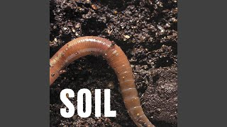 No More, No Less