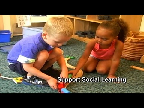 Essential Dispositions - Support Social Learning