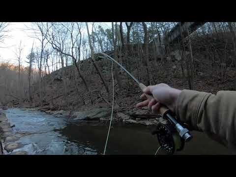 Standard MD Winter Fly Fishing