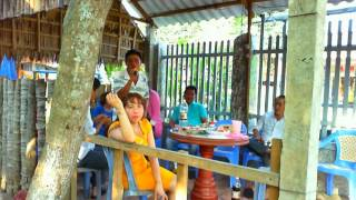 Cafe Thanh Dat dong hoa - may nhip cau tre - 08/02/2016