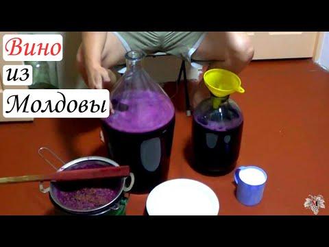 Как сделать вино из винограда молдова