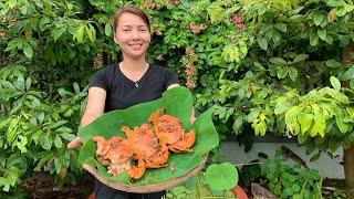 Vlog 68| Bếp Tui Làm Cua Biển Cháy Tỏi Thơm Nứt Mũi Hồ Thùy Dương Vlog Video