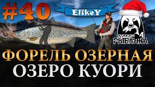 Форель Озерная Фарм Опыта и Серебра Ловим на 3 спиннинга Озеро Куори Русская Рыбалка 4 40