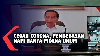 Gambar cover Jokowi: Pembebasan Hanya Napi Pidana Umum, Bukan untuk Koruptor