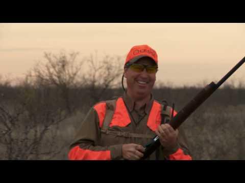 Gun Dog TV - Dog Power - Outdoor Channel