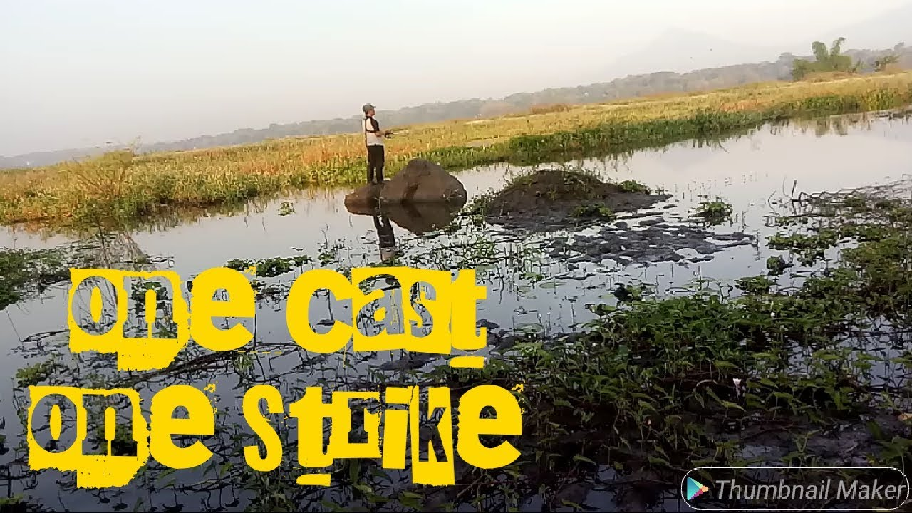 ONE CAST ONE STRIKE | Waduk Cengklik Spot Fishing | Casting Gabus