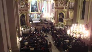 Anima Musicae Chamber Orchestra - Tchaikovsky Souvenir de Florence