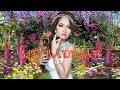 Lagi Syantik - Musik Mp3 | Remix Siti Badriah