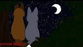 Коты-Воители Синяя Звезда и Жёлудь - Навсегда