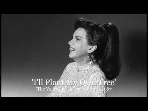 Judy Garland I Ll Plant My Own Tree The Valley Of The
