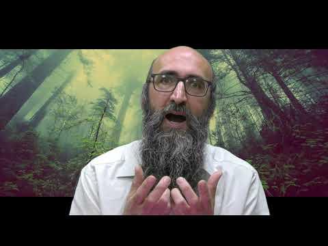 ON VA CHANGER LE MONDE 10 - Le secret des 6 Tsadikim, c'est d'être unis: 2 par 2 - Rav Itshak Peretz