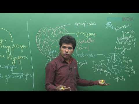 NEET I Biology I Plant Kingdom I M. Asad Qureshi(MAQ)Sir from ETOOSINDIA.COM thumbnail