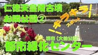 2019年5月 休館日等詳しくはこちら http://www.sakai-hanatebako.org/ ...